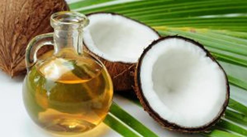 O poder dos óleos vegetais para o fortalecimento do sistema imunológico