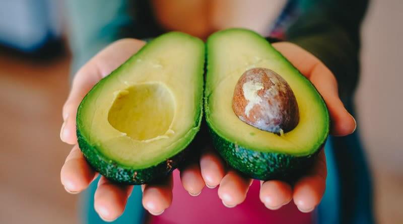 Abacate: Conheça 13 benefícios dessa fruta da estação considerada um super alimento